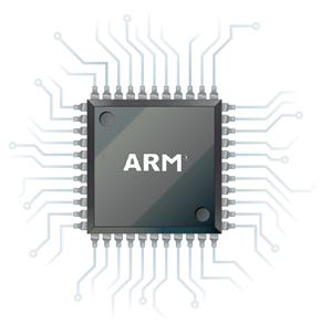 General ARM Chip Diagram