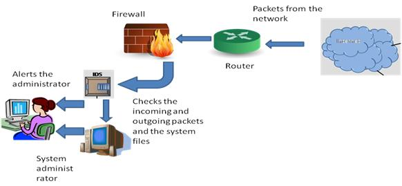 Host Intrusion Detection System