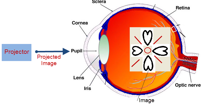Retinal Projection