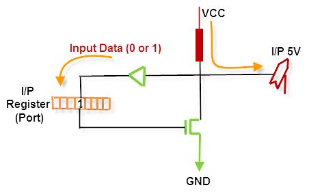 Input Pin