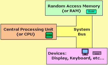 Hardware of The Processor