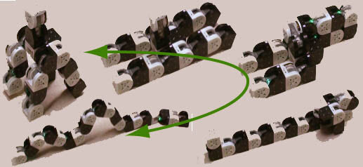 Chain Based Designs of Reconfigurable Robot