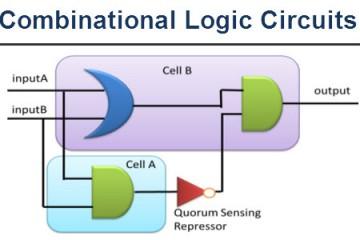 Combinational Logic Circuits