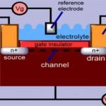 Ion Sensitive Field Effect Transistor