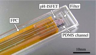 ISFET pH Sensor