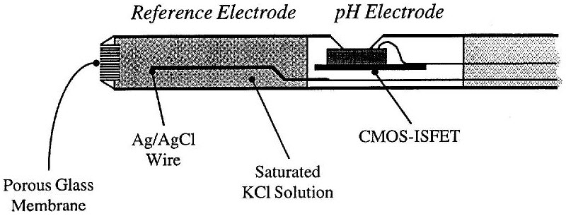 Working Principle of ISFET