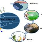 Biosensor-Featured Image
