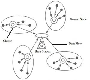 Clustered Network Architecture