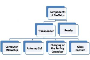 Components of BioChips