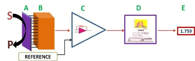 Main Components of a Biosensor