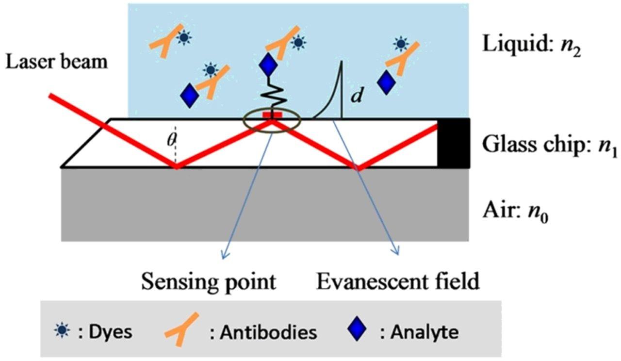Optical Biosensor
