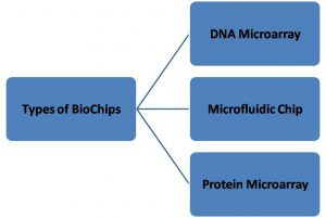 Types of BioChips