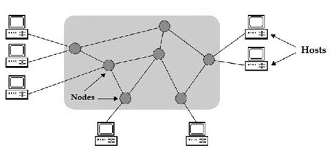 Nodes-in-Computer-Network