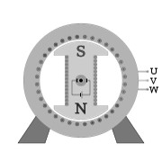 Salient Pole Rotor
