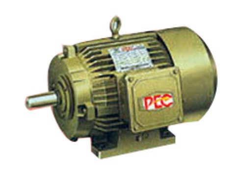 special-purpose-electric-motor